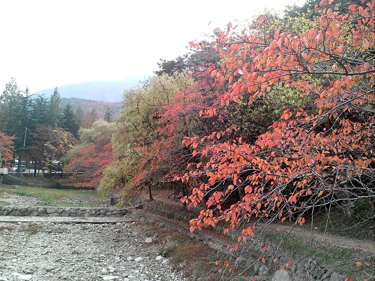 가을 정취!