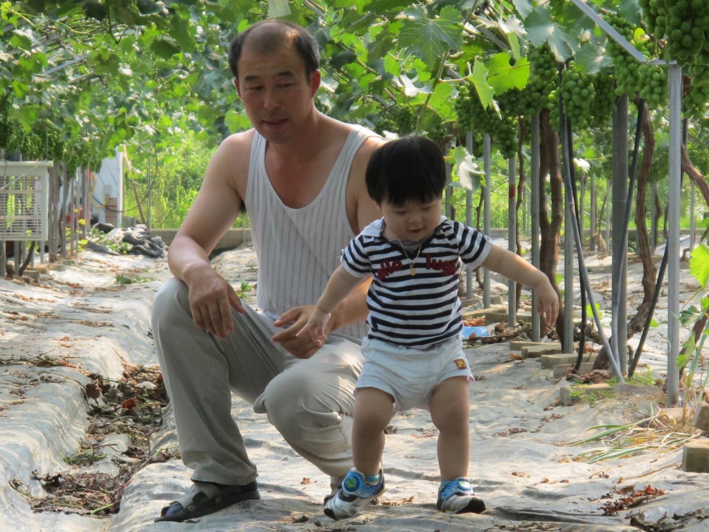 포도여행...아빠랑~ 아들이랑~